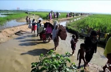 Rohingyer korsar gränsen mot Bangladesh efter att ha fördrivits från Myanmar.